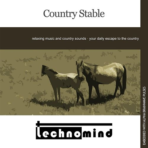Country Stable by Techno Mind