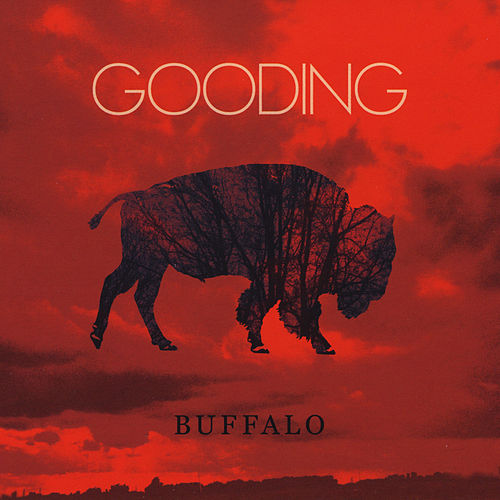 Buffalo by GOODING