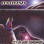 It's In Here Somewhere by Don Celenza