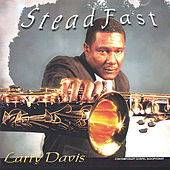 Steadfast by Larry Davis