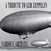 The Led Zeppelin Tribute by Various Artists