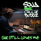 She Still Loves Me (feat. Collie Buddz) by SOJA