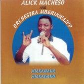 Zvakanaka zvakadaro by Alick Macheso and Orchestra Mberikwazvo