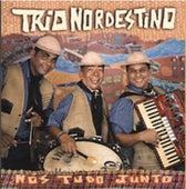 Nós Tudo Junto by Trio Nordestino
