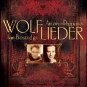 Wolf: Lieder by Antonio Pappano