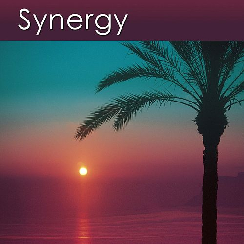 Synergy (Relaxation Music for Your Health and Well-Being) by Dr. Harry Henshaw