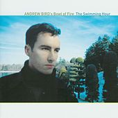 The Swimming Hour by Andrew Bird