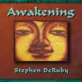 Awakening by Stephen DeRuby