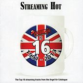 Streaming Hot by Various Artists
