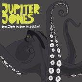 Das Jahr In Dem Ich Schlief von Jupiter Jones