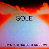 No Wising up No Settling Down by Sole