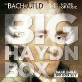 Big Haydn Box by Various Artists