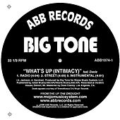 What's Up (Intimacy) feat. Dwele by Big Tone