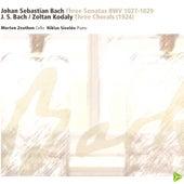 J.S. Bach / Zoltan Kodaly by Morten Zeuthen