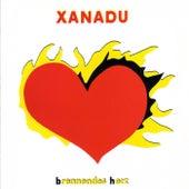 Brennendes Herz by Xanadu