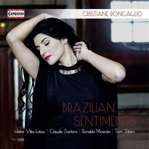 Brazilian Sentiments by Cristiane Roncaglio