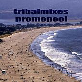 Tribalmixes Promopool by Various Artists