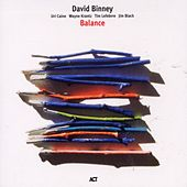 Balance by David Binney