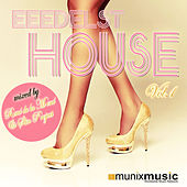 Eeedelst House Vol.1 (Mixed by Rene de la Mone & Slin Project) by Various Artists