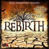 Rebirth by Various Artists