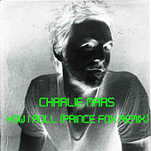 How I Roll (Prince Fox Remix) by Charlie Mars