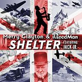 Shelter - Single by Merry Clayton