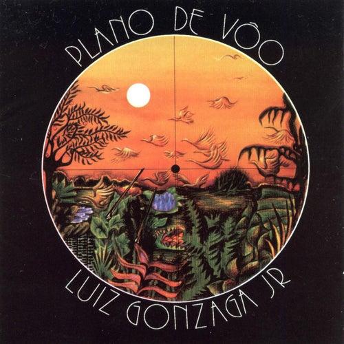 Plano De Voo by Gonzaguinha