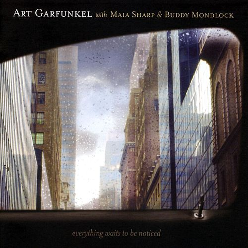 Everything Waits To Be Noticed by Art Garfunkel