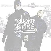 Iicons von Naughty By Nature