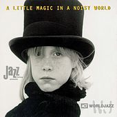 A Little Magic in a Noisy World by Various Artists