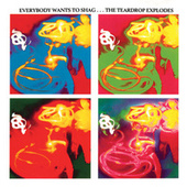 Everybody Wants To Shag by The Teardrop Explodes