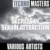 Techno Masters: Secrets Of Sexual Attraction by Various Artists