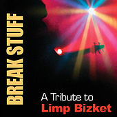 Break Stuff: A Tribute To Limp Bizkit by Various Artists