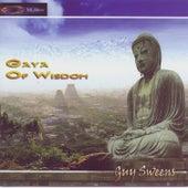 Gaya Of Wisdom by Guy Sweens