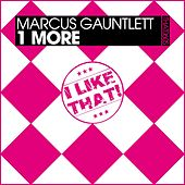1 More by Marcus Gauntlett