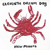 New Moodio by Eleventh Dream Day