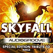 Skyfall by Audio Groove