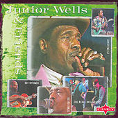 Junior Wells & Friends by Various Artists