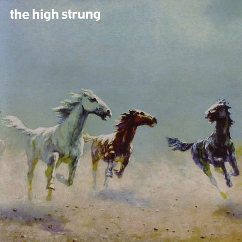 Sure As Hell by The High Strung