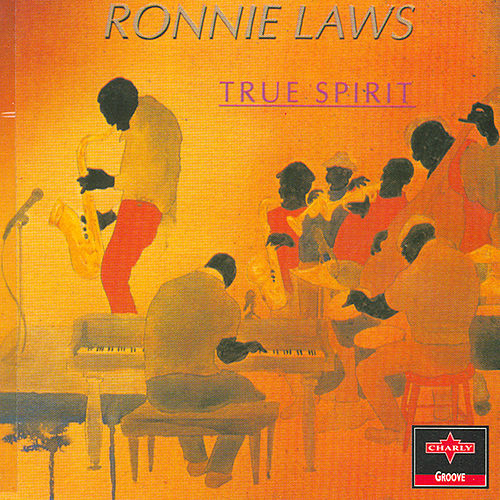 True Spirit by Ronnie Laws