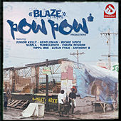 Blaze by Various Artists
