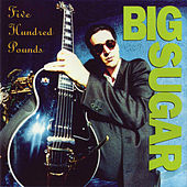Five Hundred Pounds by Big Sugar
