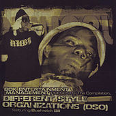 Different Style Organizations by Bushwick Bill