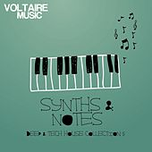 Synths and Notes 5.0 (Deep & Tech House Collection) by Various Artists
