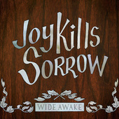 Wide Awake by Joy Kills Sorrow