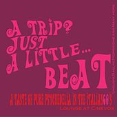 A Trip? Just a Little Beat by Various Artists