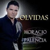 Olvidas by Horacio Palencia