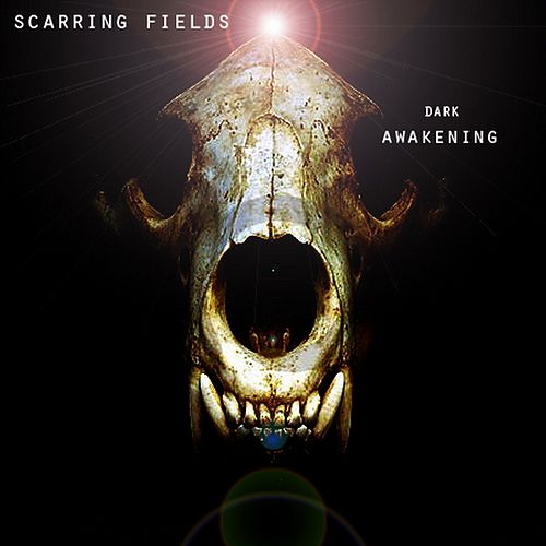 Dark Awakening by Scarring Fields