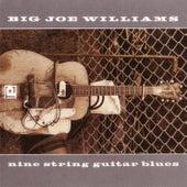 Nine String Guitar Blues by Big Joe Williams