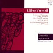 Catalonian Pilgrimage Songs & Dances From The 14th Century (Chants & Danses de Pèlerinage en Catalogne au XIV Siècle) by Ensemble Anonymus